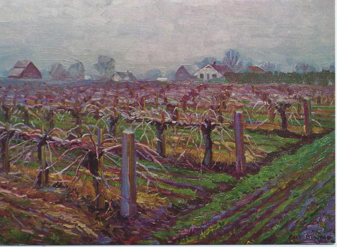"""Winter Vineyard"" by Paul Buxman"